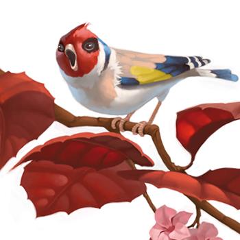 Illustration by PATRICIA CASTELAO