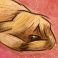 Illustration by JESS GOLDEN