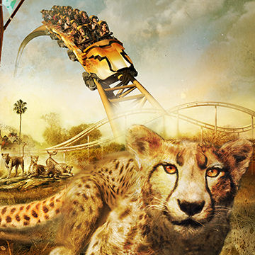 Cliff Nielsen an illustrator who creates 2D and 3D photographic vector illustration like this illustration of tigers